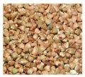 Grano Saraceno Bio Decorticato Agribosco