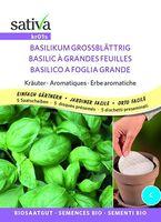 Basilico a foglie grandi preseminato Sativa