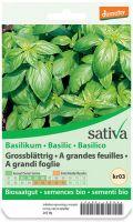 Basilico grandi foglie Sativa