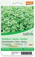 Basilico greco Sativa
