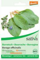Borragine - borrago officinalis Sativa