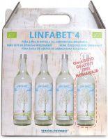 Linfa di betulla - bauletto 4 Linfabet