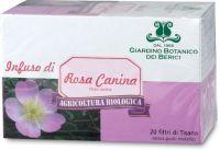 Rosa canina Berici-infusi
