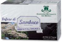 Sambuco Berici-infusi