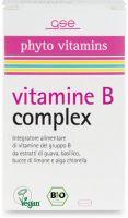 Vitamine b complex Gse